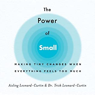The Power of Small: Making Tiny Changes When Everything Feels Too Much by Aisling Leonard-Curtin, Trish Leonard-Curtin
